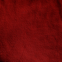 Canvas red fabric